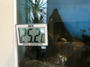 水温25.2℃